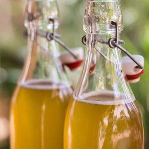 Homemade Bottled Kombucha Green Tea