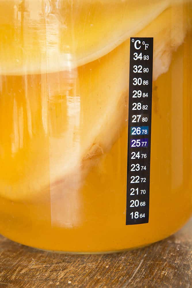Kombucha Fermentation Temperature