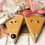 Twin Caramel Fudge Reindeer