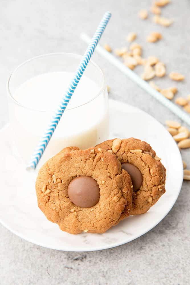 Peanut Butter Choc Chip Thermomix Cookies WEB