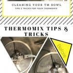 Thermomix Bowl Lemon Wash