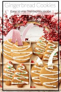Boxed Gingerbread Pin