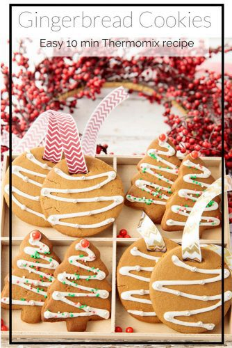 Thermomix Christmas Gingerbread Cookie Recipe