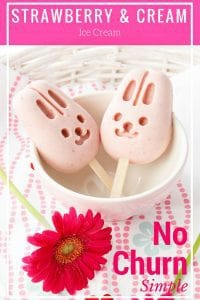 Strawberry Popsicles Pin - ME