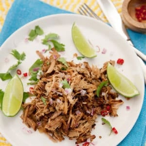 Overhead shot of pulled pork on a white plate with lime garnish