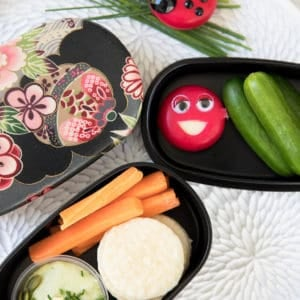 Overhead shot of Le Snak and crackers in a Bento Box