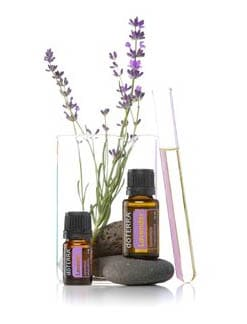 Picture DoTERRA Lavender oil and a lavender sprig in a glass