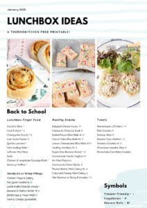 List of lunchbox ideas for school with pictures